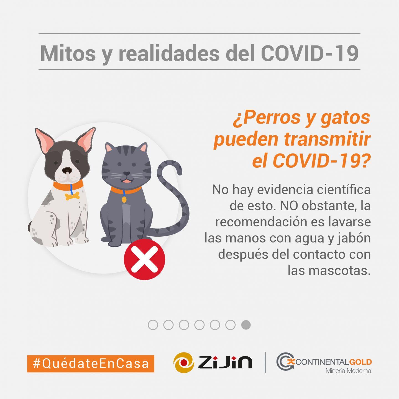 Mitos y realidades_Coronavirus-31